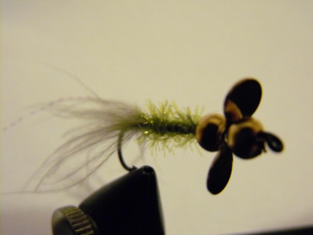 Fotos y vídeos de nuestras moscas - Página 2 DSCF2089_zpse22cd41f