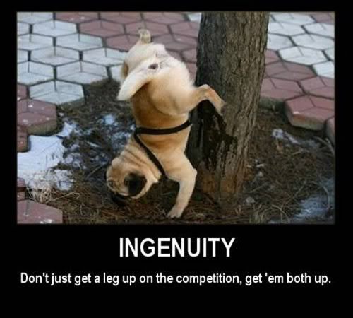 Motivational Pictures of the day - Page 3 Ingenuity