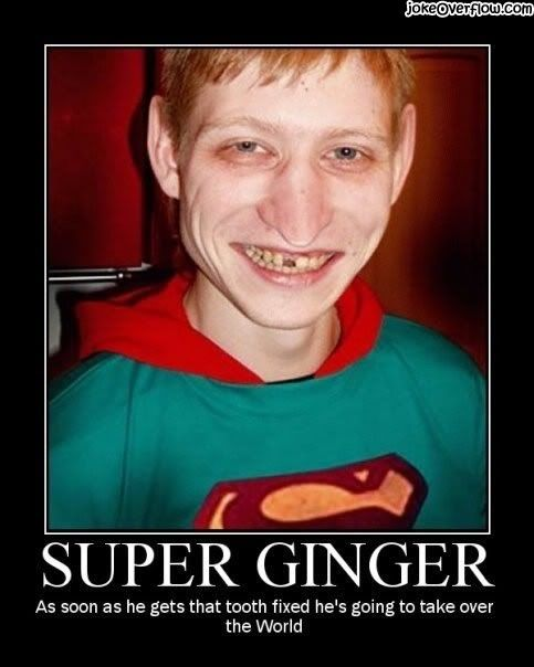 Motivational Pictures of the day - Page 2 Motivational_super-ginger