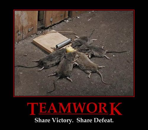 Motivational Pictures of the day Teamwork
