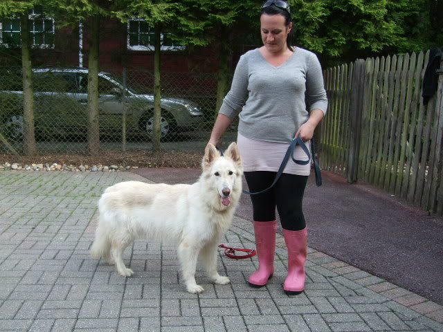 Lucy - 5 years old white female finally homed DSCF7167
