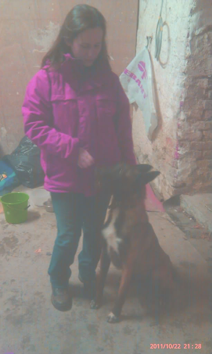 Janice approx 22 months Homed IMAG0176