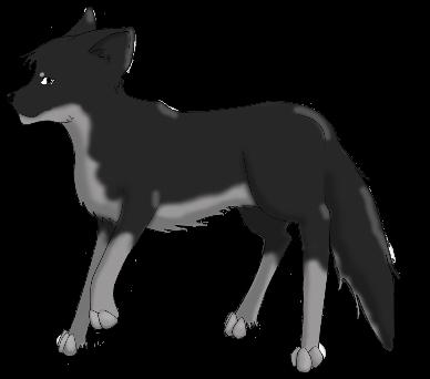 Customizable Pets - The Foxin Akila