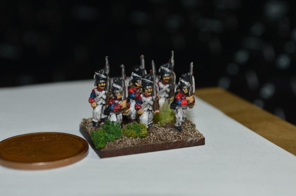 Ejército Francés 1809 DSC_0322_zps3a6fde7d