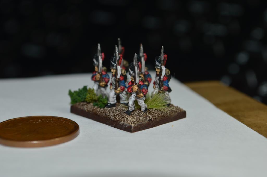 Ejército Francés 1809 DSC_0323_zpsef8f7e62