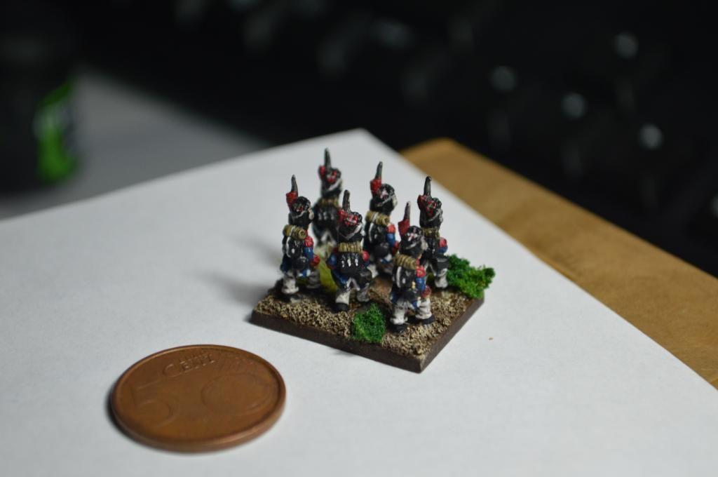 Ejército Francés 1809 DSC_0327_zps53586791