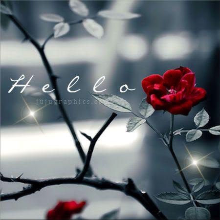 FOTO TË MUAJIT GUSHT Hello10affid