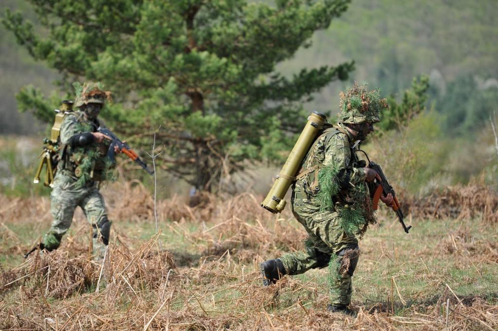 Forces Armées Croates /Croatian military /Oružane Snage Republike Hrvatske - Page 4 Vukovi_08042014_11_zps35425b89