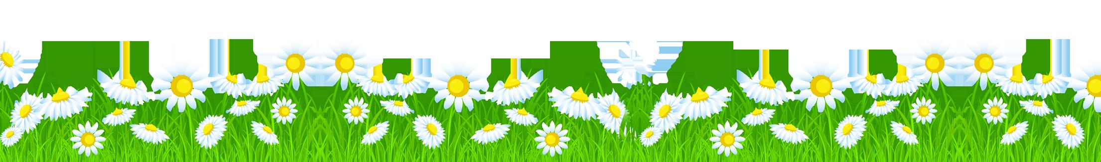 Галерея выпускников: Луговые цветы 4f9e5ae7a037fac83c71b64574bae28b