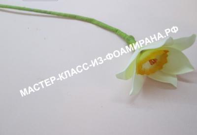 Фоамиран - Страница 2 842eed8257deae6c2cc22dec1d6c897d