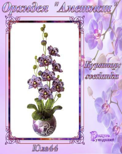 """Галерея выпускников орхидея """"Аметист"""" D594a666df8ee34cf983a358f81ff008"""