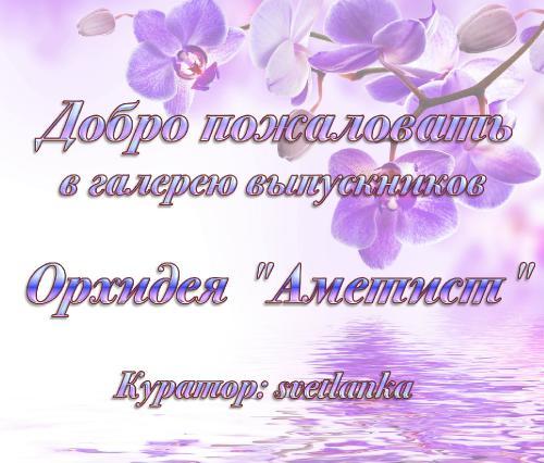 """Галерея выпускников орхидея """"Аметист"""" 2cf004b912b37b8ce4fe35325a937eac"""
