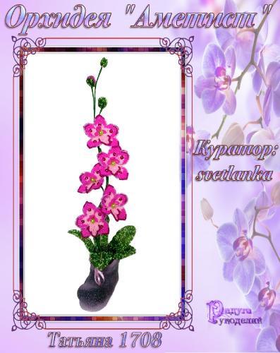 "Галерея выпускников орхидея ""Аметист"" 2cf5183a96288c7feb861fd35adef5d0"