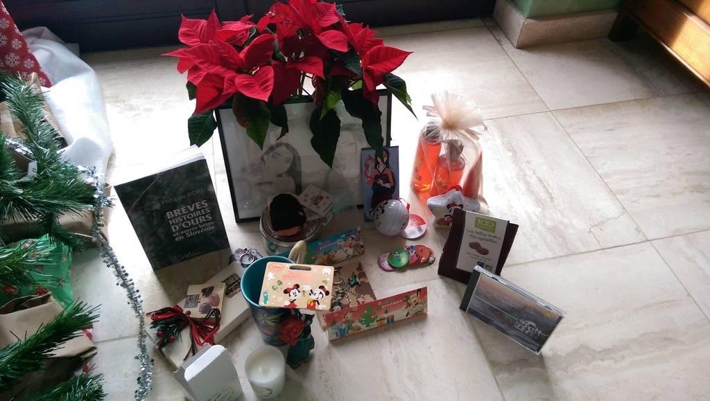 Père-Noël Surprise 2016 - Inscriptions closes : à vous de jouer - - Page 2 IMAG0186_zpscjn84mgf