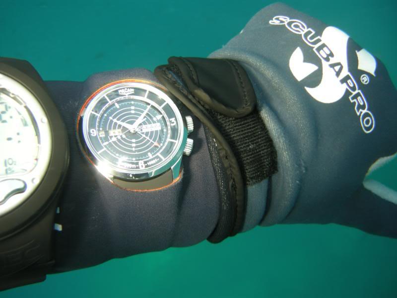 A quoi sert une montre de plongée de nos jours ? - Page 2 DSCN66145