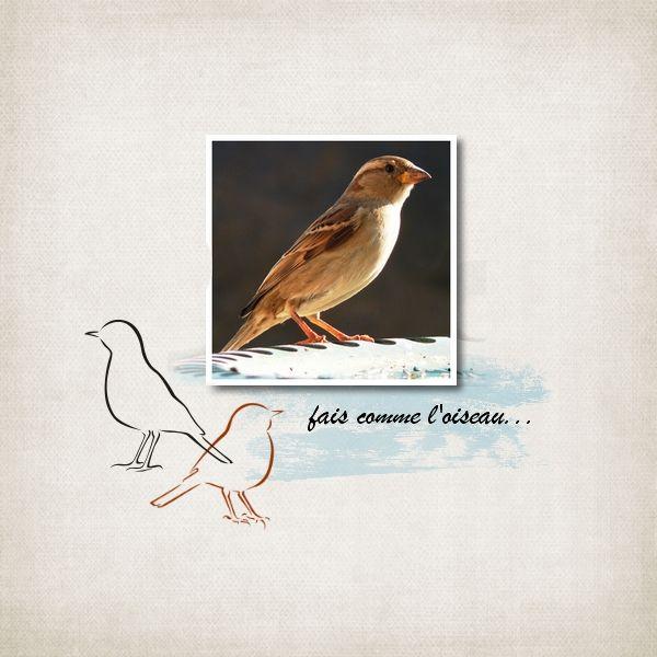 N°148 - C&S - Votes du 01/03 au 10/03 Oiseau2_zpse9f51596