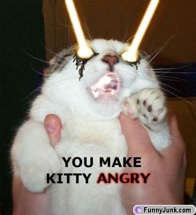 Pics for lulz. - Page 3 Kittyangry