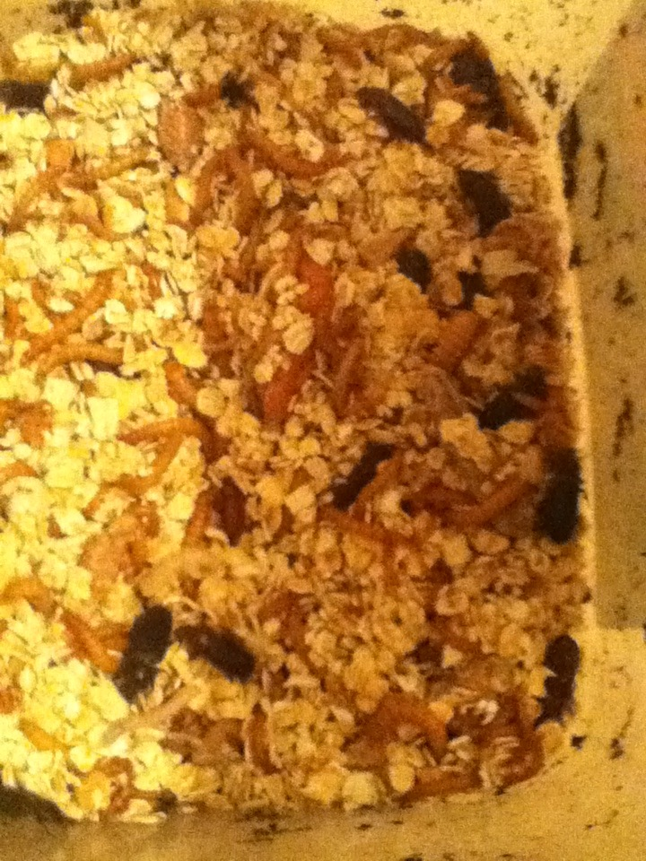 Mealworm Colony 2015! [Picture Thread] IMG_0346_zpseala3yqw