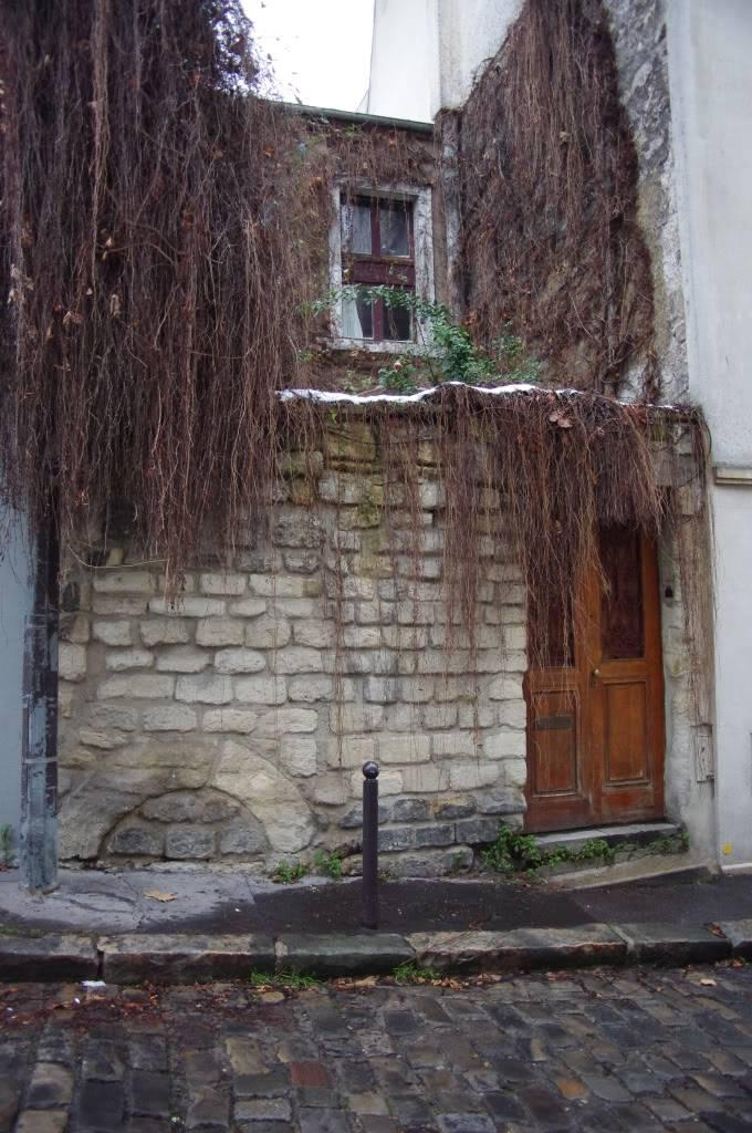 sortie Paris / La Butte aux cailles du 28 décembre 2010 - Page 13 IMGP3723-1