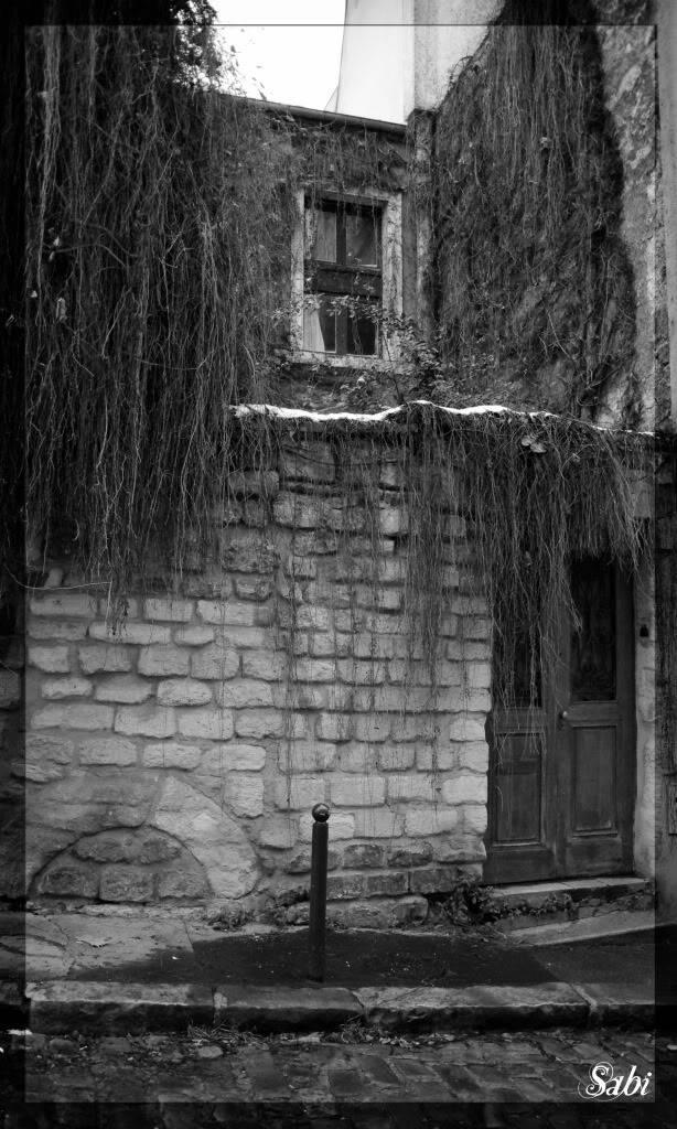sortie Paris / La Butte aux cailles du 28 décembre 2010 - Page 13 IMGP3723