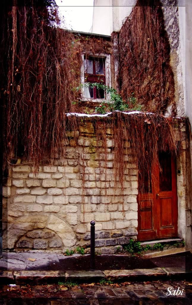 sortie Paris / La Butte aux cailles du 28 décembre 2010 - Page 13 IMGP37234