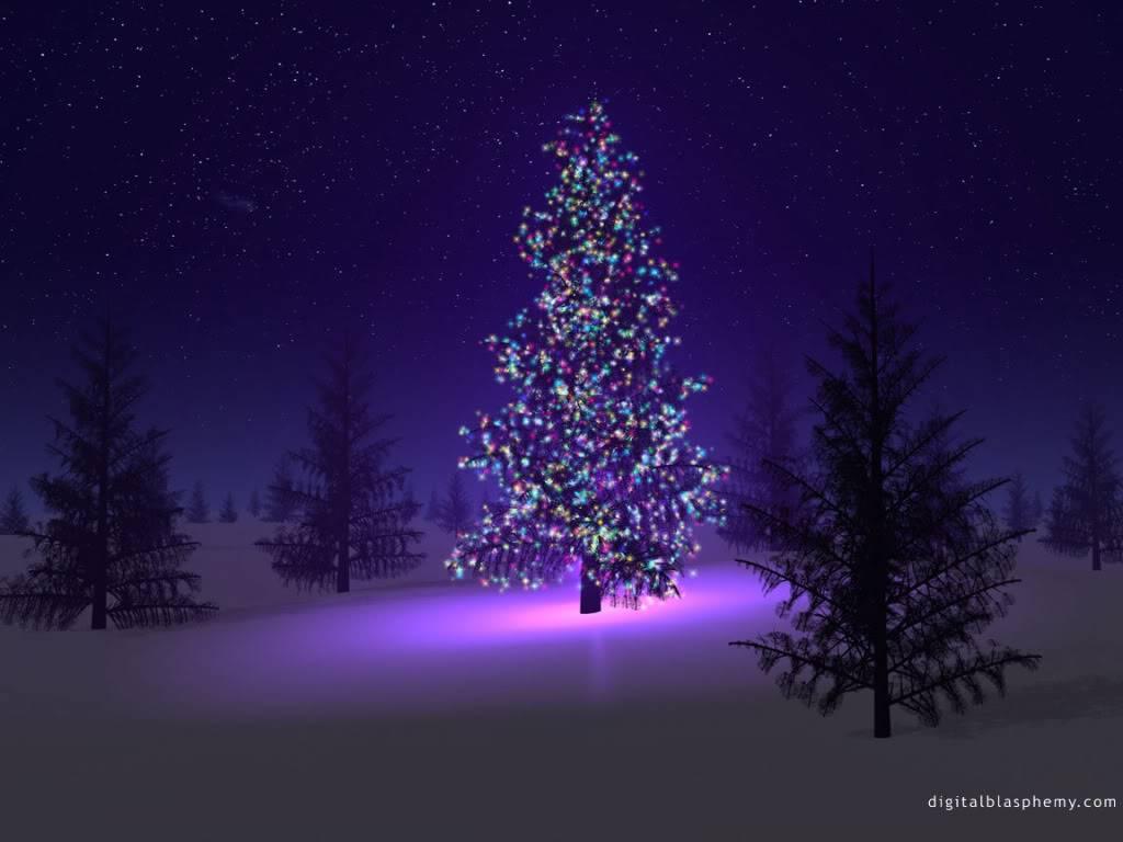 Trees (2) Christmas-tree