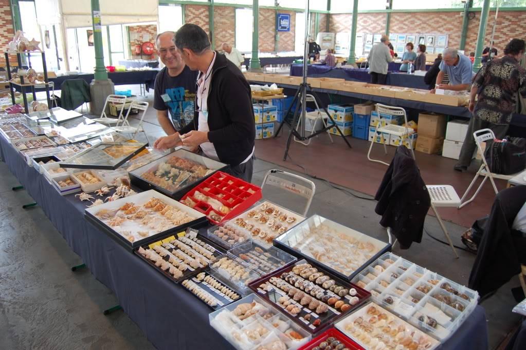 2011 Bourse de Rennes - 4 & 5 juin DSC_6753