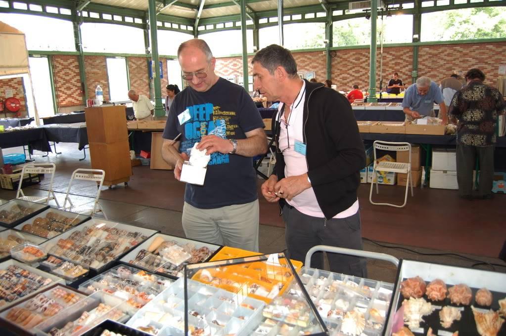 2011 Bourse de Rennes - 4 & 5 juin DSC_6754