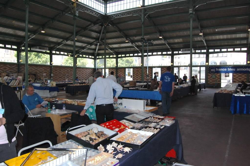 2011 Bourse de Rennes - 4 & 5 juin DSC_6756
