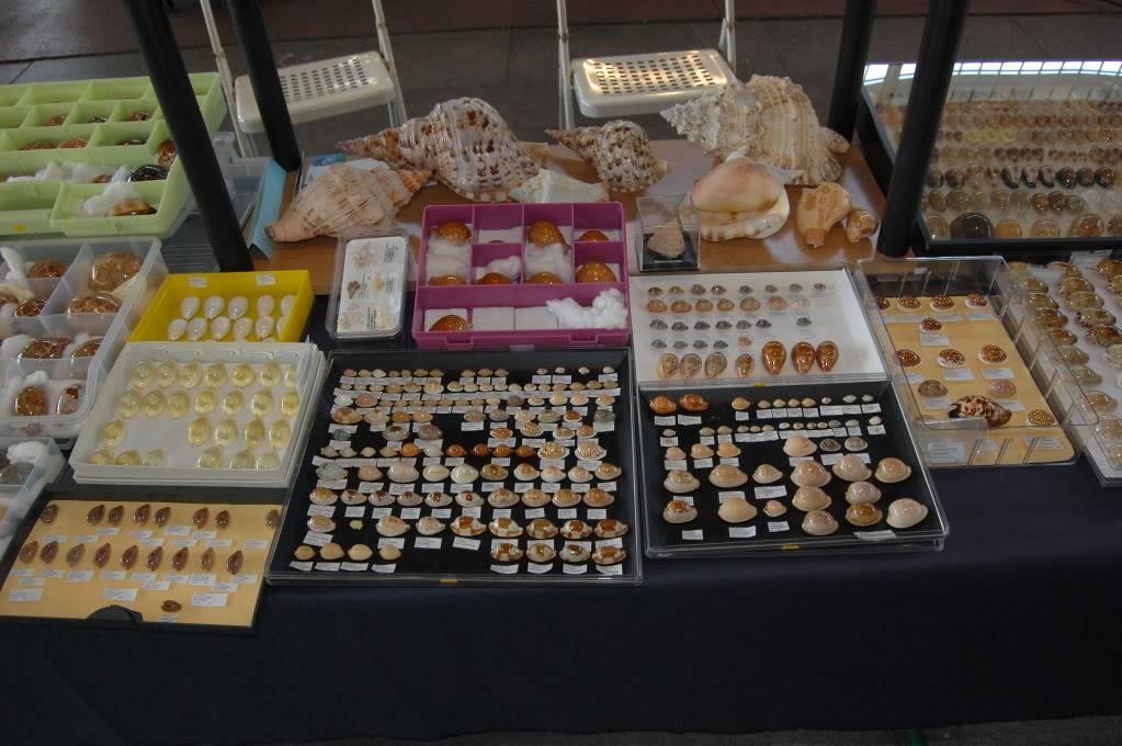 2011 Bourse de Rennes - 4 & 5 juin DSC_6757