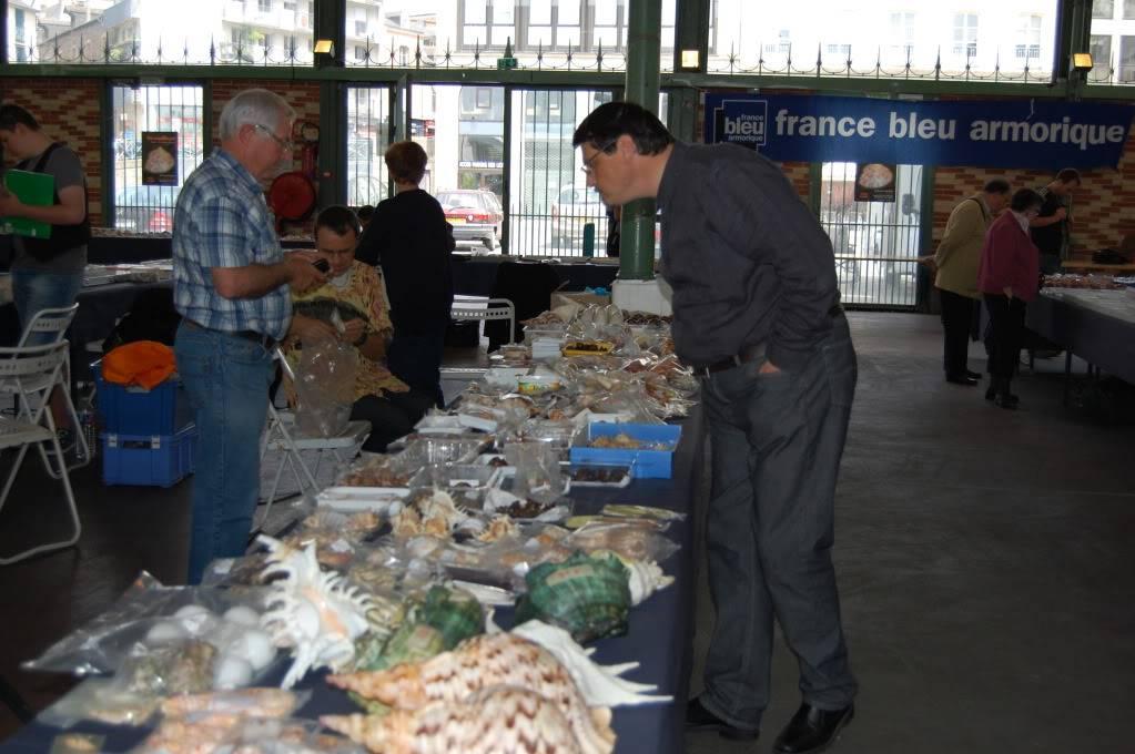 2011 Bourse de Rennes - 4 & 5 juin DSC_6797