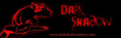 Dark Shadow Bannerds