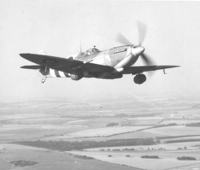O Spitfire cervejeiro SPITFIRECERVERJEIRO1
