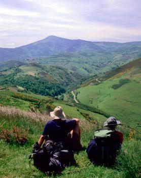 SOCIEDAD Camino305