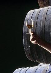POEMAS DEDICADOS A CÁDIZ Vino