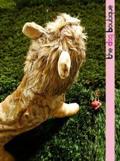 The Dog Boutique: Pet Clothes & Pet Jewels for Sale Lion-01