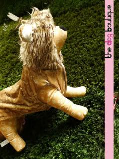 The Dog Boutique: Pet Clothes & Pet Jewels for Sale Lion-02-1