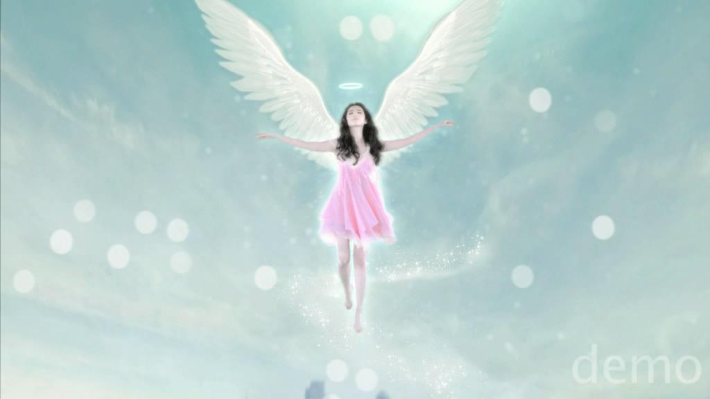 ถ่ายโฆษณา Z'DORZI_卓多姿 2012 04