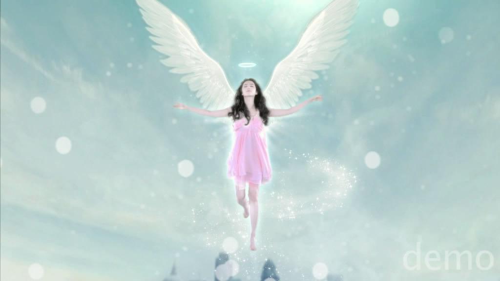 ถ่ายโฆษณา Z'DORZI_卓多姿 2012 06