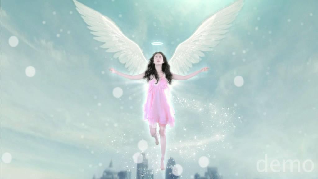 ถ่ายโฆษณา Z'DORZI_卓多姿 2012 07