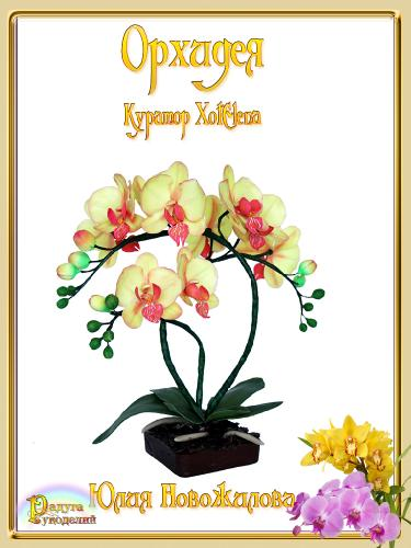 Галерея выпускников - Орхидея - лепка из холодного фарфора  D6edcae516c4392bf8d17e8c0a4db90b