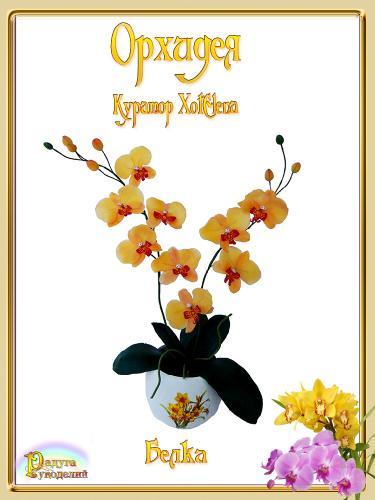 Галерея выпускников - Орхидея - лепка из холодного фарфора  0419fd05a55e629e55c6278a33198a8b