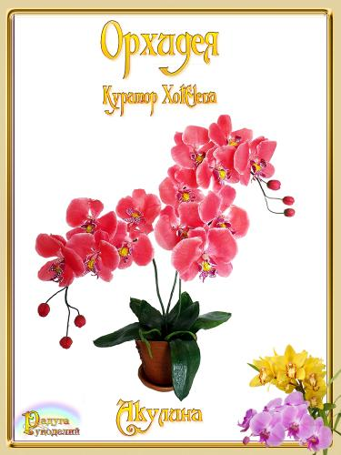 Галерея выпускников - Орхидея - лепка из холодного фарфора  C620bbcc8cd23ed9f431f80a4aad95b8