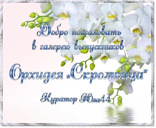 "Галерея выпускников Орхидея ""Скромница"" 2bf84e9003e4daeddc8017156431f64c"