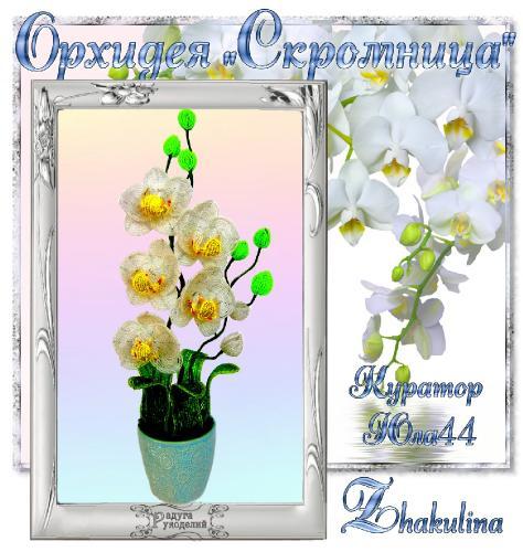 """Галерея выпускников Орхидея """"Скромница"""" _37a3d7b55aabfe274747843ac9aaa167"""