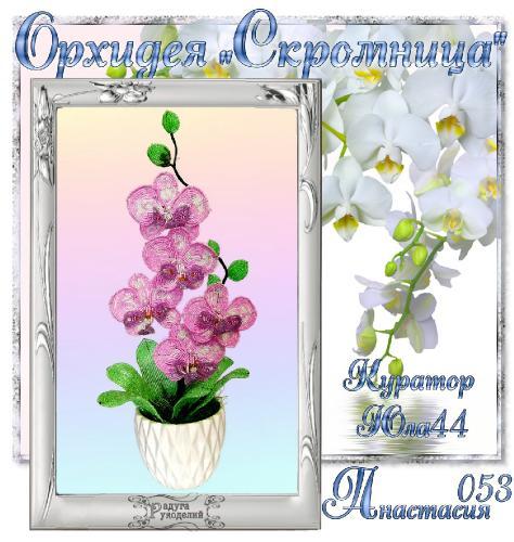 """Галерея выпускников Орхидея """"Скромница"""" _94877c27b93e69d98ccdba57f77bec71"""