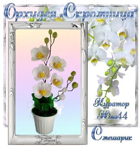 "Галерея выпускников Орхидея ""Скромница"" _e5333777aacc80bfd06fb46e489385bc"