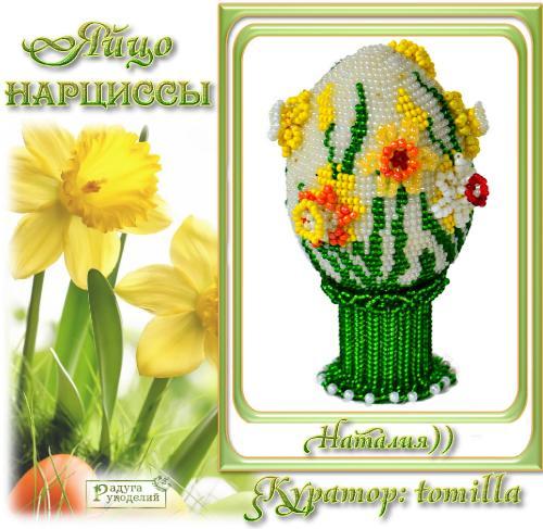 Галерея выпускников яйцо Нарциссы _3da507a68f4f43444b4b6a1f8ef8304a