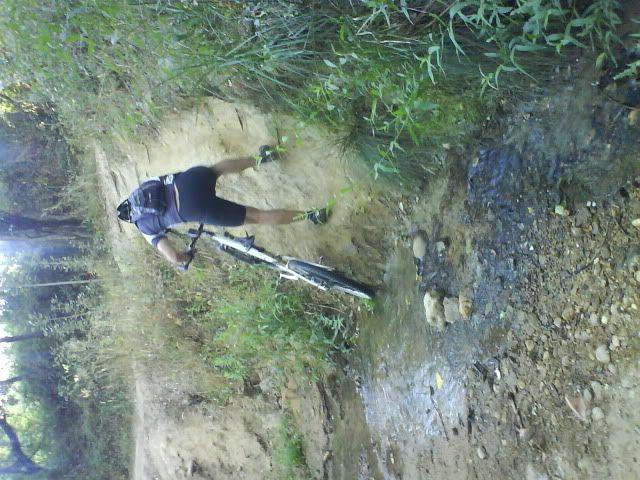 Barragem Castelo de Bode - 23/07/2011 - Em busca do Crocodilo que virou peixe gato DSC03375