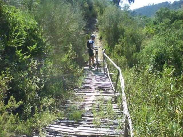 Barragem Castelo de Bode - 23/07/2011 - Em busca do Crocodilo que virou peixe gato DSC03382
